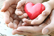 Adult Hands Holding A Child's Hands Holding A Small Red Heart