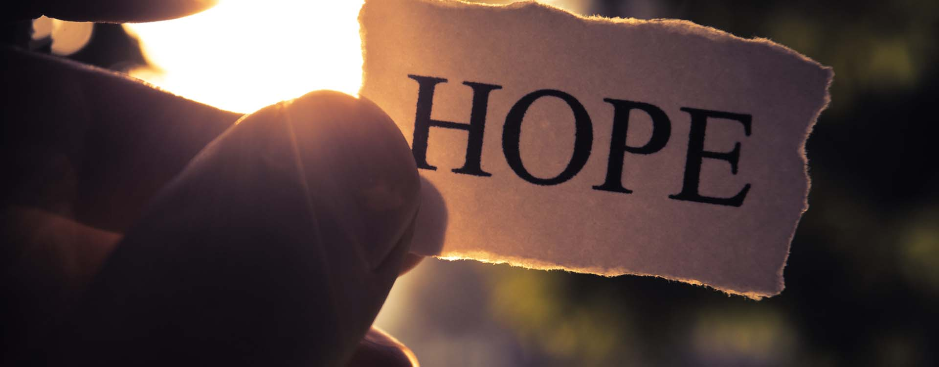 "Small piece of paper with the word ""Hope"" written on it"