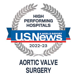 high performing indicator aorticvalve