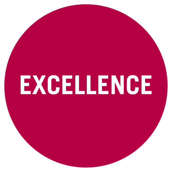 Values Circles Excellence
